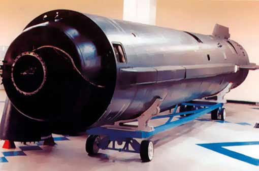 Тятя, тятя, наши сети притащили баллистическую ракету!
