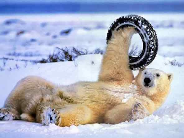 Зимние шины как подарок к рождеству