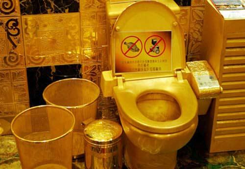 дорогой туалет