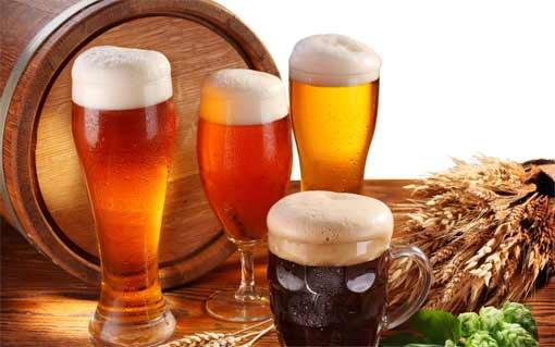 Можно ли пить пиво ушами?