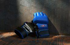 Анонс турнира тяжеловесов RIZIN 29 декабря 2015