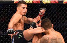 Эдди Альварес — Энтони Петтис: прогноз на бой UFC Fight Night 81 17.01.2016