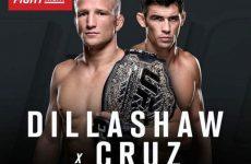 UFC Fight Night 81 файткард: полный список боёв шоу 17.01.2016