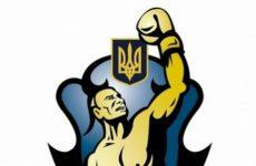 Всемирная серия бокса Украина — Турция 12.02.2016: смотреть онлайн видео трансляцию сегодня