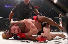 Bellator наращивает телеаудиторию