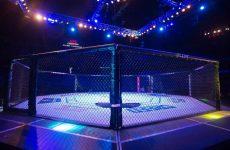 Небитые мастера нокаутов Уайстен и Уилсон сойдутся на UFC 199
