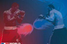 Бокс Украинские Атаманы — Китайские Драконы Всемирная серия 12 марта 2016: видео трансляция смотреть онлайн сегодня