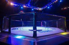 Кейта Бериша на UFC Fight Night 88 заменит небитый новичок Альберто Перейра Удо