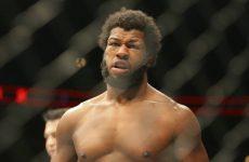 Дэнни Робертс — Доминик Стил 23.04.2016: прогноз на бой UFC 197