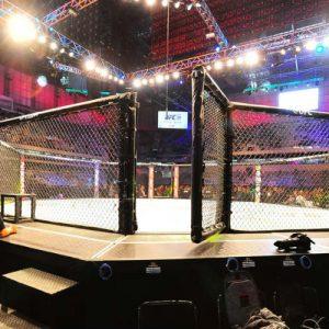 UFC Fight Night 96 посетили 6240 фанатов