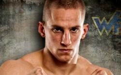 Бой Майкл Грэйвс — Боян Величкович 30.07.2016: смотреть онлайн видео трансляцию UFC 201 сегодня