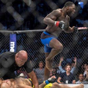 Статистические итоги основного карда UFC 202