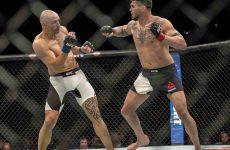 Бой Крис Камоцци — Даниэль Келли добавлен в кард UFC Fight Night 101