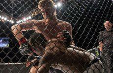 2 новых боя пополнили список декабрьских событий UFC