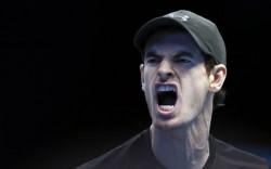 Финал турнира ATP Джокович — Маррей: смотреть онлайн видео трансляцию сегодня, 20.11.2016