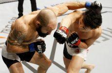 Каб Свонсон — Ду Хо Чой 10.12.2016: прогноз на бой UFC 206