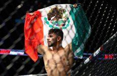 Фрэнки Эдгар vs. Яир Родригес — новый бой для UFC 211