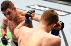 Аль Яквинта — Диего Санчес 22.04.2017: прогноз на бой UFC Fight Night 108