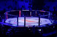 UFC on FOX 25: дата и место проведения определены