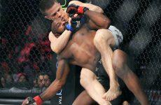 Марцин Хелд — Дамир Хаджович 28.05.2017: прогноз на бой UFC Fight Night 109
