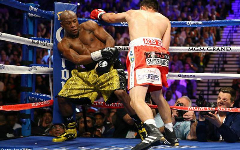 Разница бокса и кикбоксинга: в чём отличия?