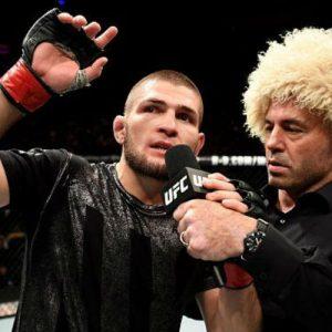 Звёзды UFC: самые перспективные бойцы MMA сегодня
