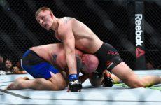 Александр Волков — Стефан Штруве 2.09.2017: прогноз на бой UFC Fight Night 115
