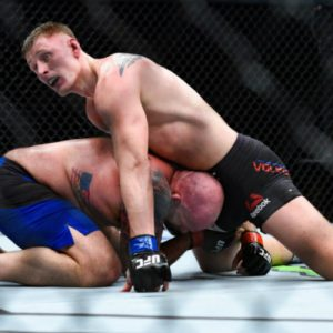 Александр Волков — Стефан Штруве 2.09.2017: прогноз на бой UFC Fight Night 115