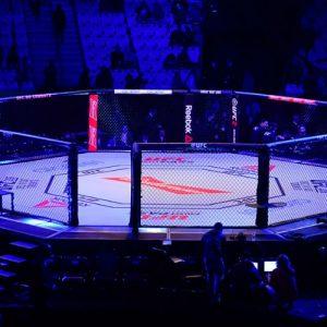 UFC Fight Night 123: дата и место турнира обнародованы