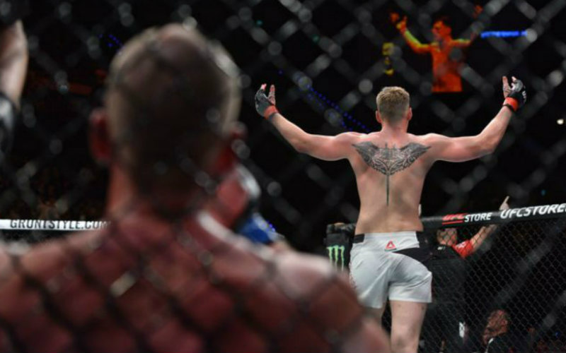 Волков нокаутировал Штруве и другие результаты UFC Fight Night 115
