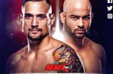 Видео боя Джеймс Краус — Уорлли Алвес UFC Fight Night 135