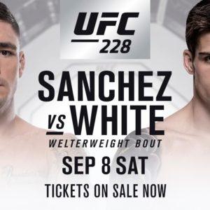 Видео боя Диего Санчес — Крэйг Уайт UFC 228