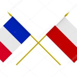Прямая трансляция Польша — Франция. Волейбол. ЧМ.
