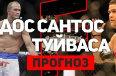 Прогноз на бой Джуниор Дос Сантос — Тай Туйваса UFC Fight Night 142 01.12.2018