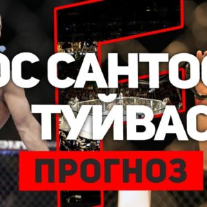 Прогноз на бой Джуниор Дос Сантос - Тай Туйваса UFC Fight Night 142 01.12.2018