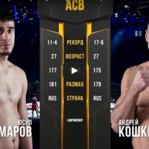 Видео боя Юсуп Умаров - Андрей Кошкин ACB 89