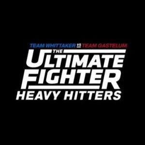 Первый эпизод шоу: The Ultimate Fighter 28