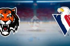 Прямая трансляция хоккейного поединка Амур — Слован. КХЛ.