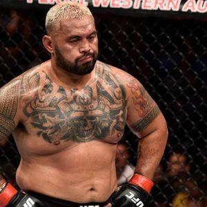 Марк Хант не против провести последний бой в UFC против Гокхана Саки