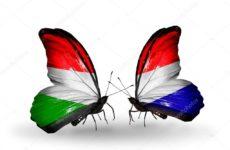 Прямая трансляция баскетбольного поединка Голландия — Венгрия