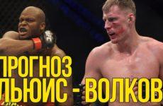 Прогноз на бой Александр Волков — Деррик Льюис UFC 229 06.10.2018