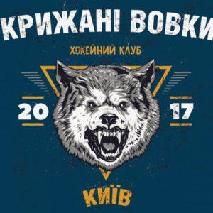 Прямая трансляция Ледяные Волки - Динамо Харьков. Хоккей. КХЛ.