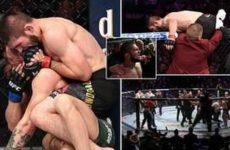 Хабиб Нурмагомедов задушил Конора Макгрегора на UFC 229