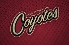 Видео. Аризона Койотс набрали форму и уверенно обыграли Оттава Сенаторс в матче NHL. 31.10.18