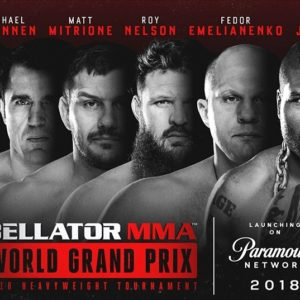 Результаты турнира Bellator 207
