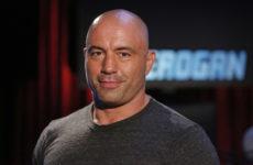 Джо Роган: «Диллон Данис спровоцировал Хабиба на UFC 229»