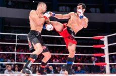 Сборная России примет участие в первом объединенном ЧМ по MMA