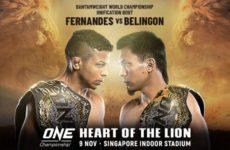 Результаты турнира ONE: HEART OF THE LION