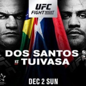 Файткард турнира UFC Fight Night 142: Дос Сантос - Туиваса