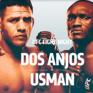 Файткард турнира The Ultimate Fighter 28 Finale: Дос Аньос - Усман
